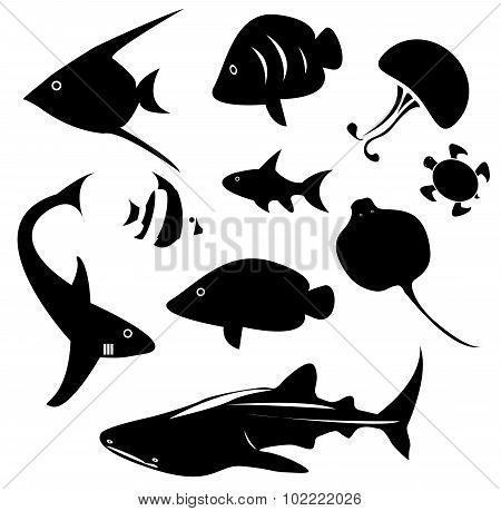 Silhouette Marine Animal And Reptile Such As Shark, Sea Turtle, Jellyfish, Ray, Butterfly Fish, Ange