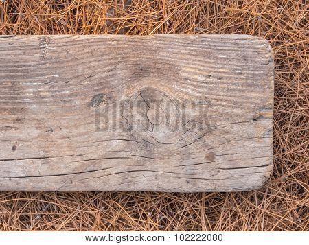 Pine needles and old Board