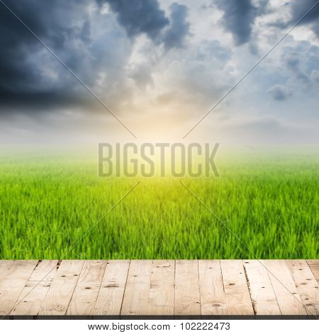 Abstract Blurred Rice Field And Wood Table With Sunlight, Rainclouds