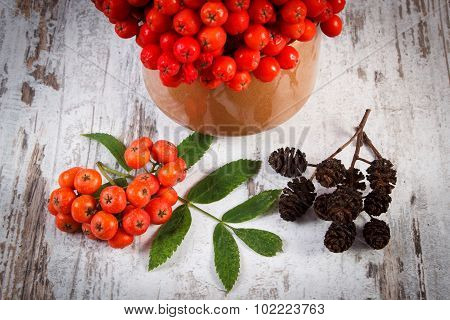 Bunch Of Red Rowan With Leaves And Alder Cone On Rustic Wooden Background