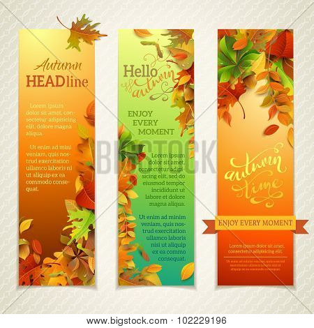 Vector Set Of Bright Vertical Autumn Banners.