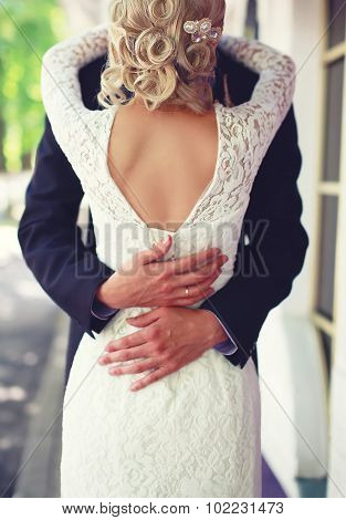 Wedding Elegant Couple Hugging, View Of Back, Lace Bridal Dress