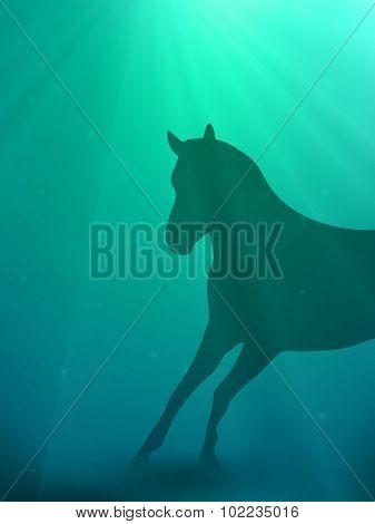 vector horse silhouette