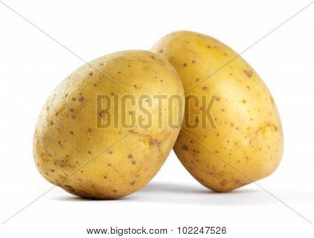 Potatoes Closeup
