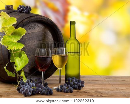 Wine still-life, glass, young vine and bunch of grapes