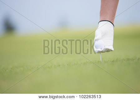 Hand holding ball and tee at golf course