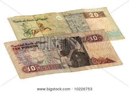 10 and 20 pound bill of Egypt