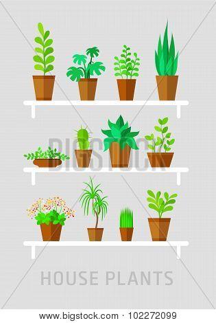 potted plants flat vector set