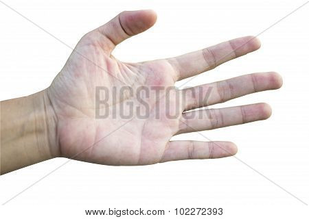 Hand extend counting five on white background