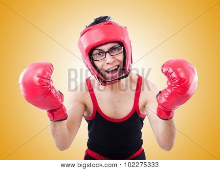Funny boxer isolated on the white background