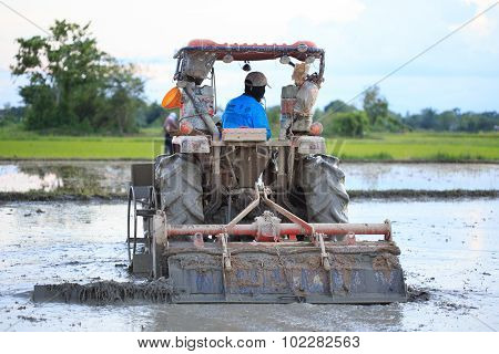 Tractor Plowing A Rice Field In Chiang Mai, Thailand On August 07, 2015.