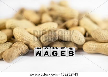 Wages Text With Peanuts And Letters