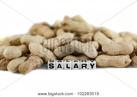 Salary Text With Letters