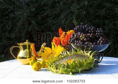 Gifts Of Autumn - Sunflower, Sunflower Seeds, Orange Flowers, Vines And Gold A Tea Maker. Isabella.