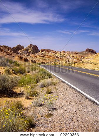 Long Winding Road Through Valley Of Fire State Park
