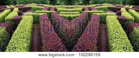Edgerow Symmetrical Garden Labyrinth Green And Red