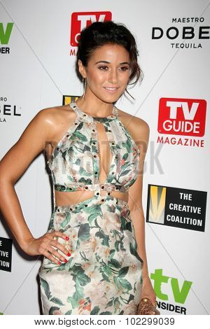 LOS ANGELES - SEP 18:  Emmanuelle Chriqui at the TV Industry Advocacy Awards Gala at the Sunset Tower Hotel on September 18, 2015 in West Hollywood, CA