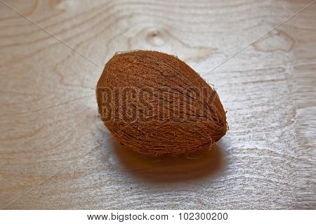 Large Whole Coconut With Hairy Surface