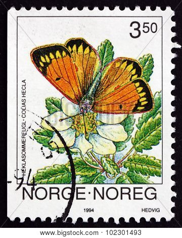 Postage Stamp Norway 1994 Northern Clouded Yellow, Colias Hecla,