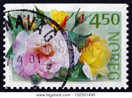 Postage Stamp Norway 2001 Sekel, Rose Varieties