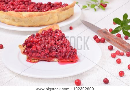 Piece Of Cowberry Pie On White Plate