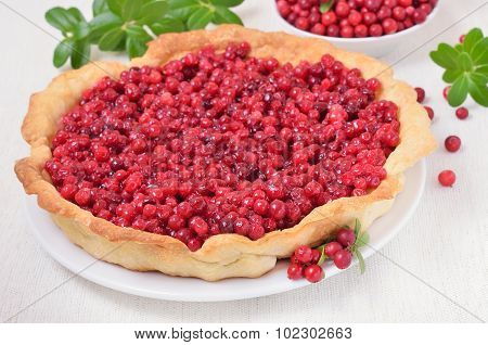 Cowberry Pie On White Plate, Close Up View