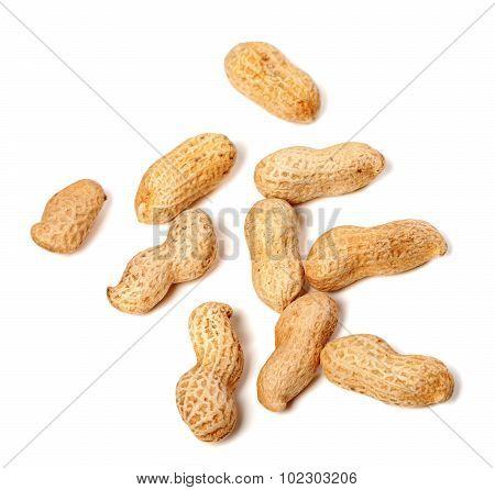 Unpeeled Peanuts