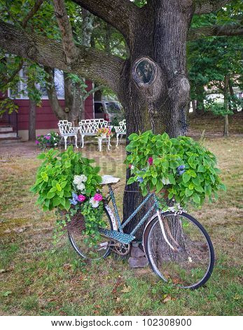 Parked Bike