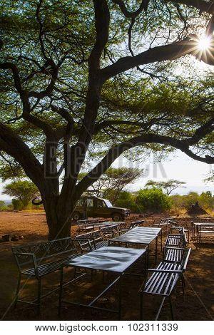 Wildlife safari tourists on picnic in the wild