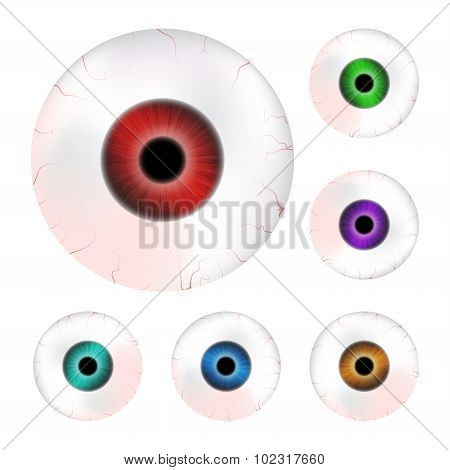 Image Of Realistic Human Eye Ball With Colorful Pupil, Iris. Vector Illustration Isolated On White B