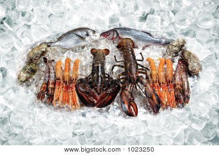 Seafood On Ice