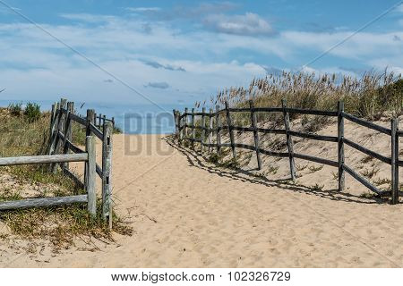 Sandbridge Beach Pathway