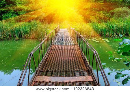 Small bridge over river with green water in forest