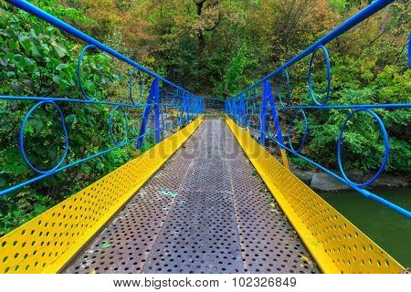 Blue and yellow painted bridge as ukrainian flag over river in autumn forest