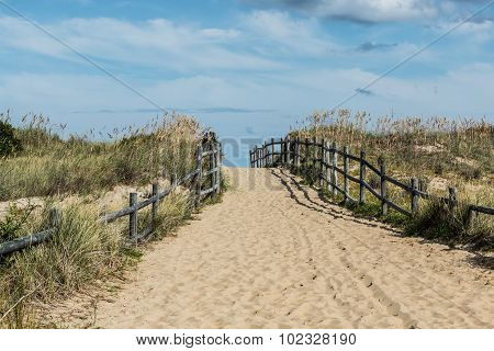 Sandbridge Empty Beach Pathway