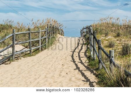 Uphill Pathway to Sandbridge Beach