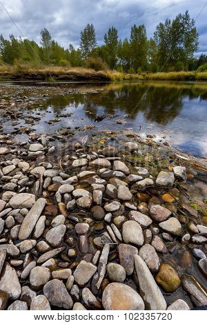 Pattern Of Rocks In River Bed.