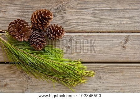 Pine Cones And Green Branch On Wood Board