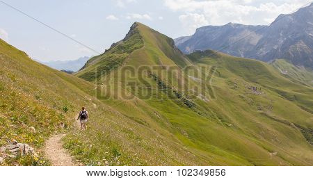 Hiker, Young Woman With Backpack