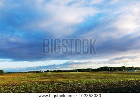 Wide Field Landscape And Some Agricultural Buildings Under A Big Cloudy Evening Sky