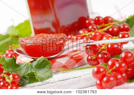 tea spoon with piece of fruit jelly surrounded by fresh red currant