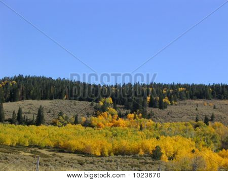 Fall On The Mountain