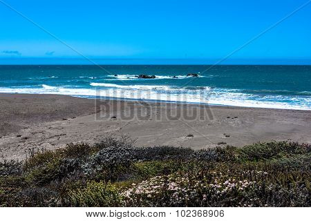 The beach near Cambria, California