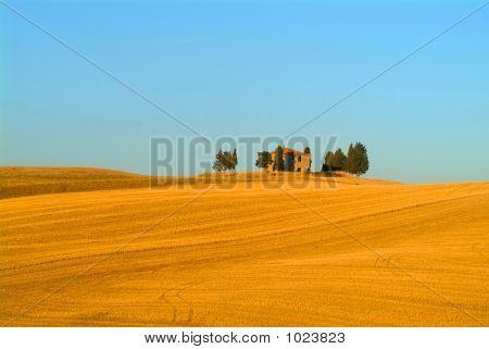 Toskana | Tuscany