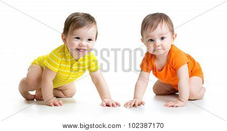 cute crawling babies boys isolated on white background