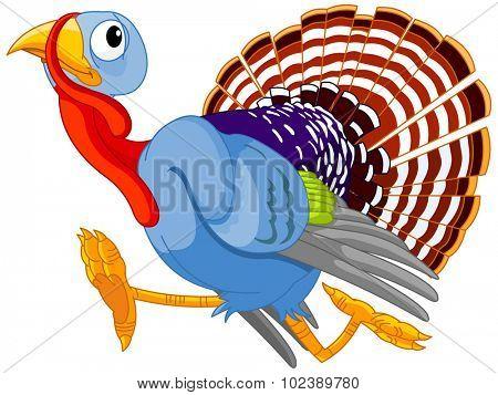 Illustration of cute turkey is running