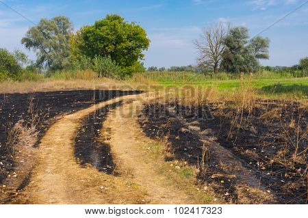 Rural landscape with burnt herbs