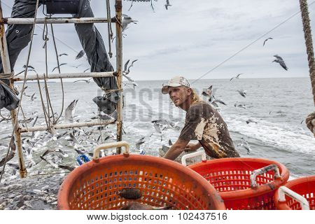 commercial fisherman sorting catch on deck of trawler