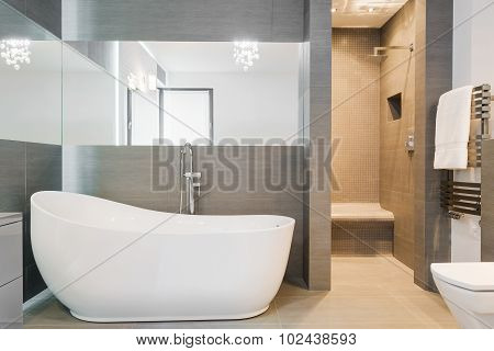 Big New Design Bathtub