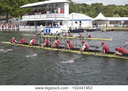 HENLEY, ENGLAND. 04-07-2010.  Harvard University, USA (bottom) celebrate their win over  Oxford Brookes & Oxford University in The Ladies Challenge Plate  on day 5 of the Henley Royal Regatta 2010